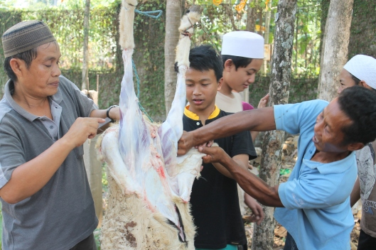The men skinning Socrates. (Eid-ul-Adha)