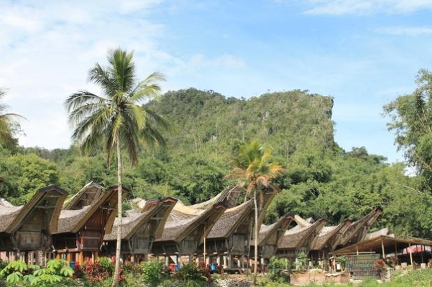 Toraja land.
